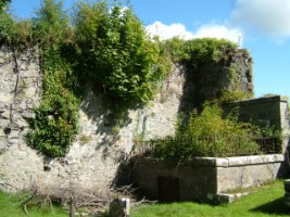 Remains of Killeigh friary, Killeigh, Co. Offaly