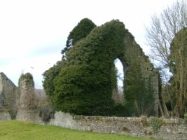 The abandoned ruins of the church at Kildare friary, Kildare