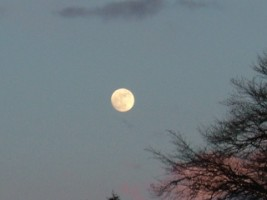 Moon at dusk over Multyfarnham, Co. Westmeath