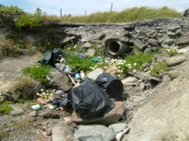 Domestic rubbish dumped amongst sea mayweed and coastal rocks with sewage pipe in background