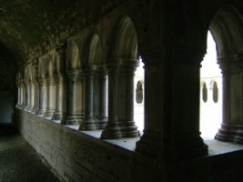 A view of the cloister, Askeaton friary, Co. Limerick