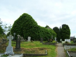 View of the friary church in Jamestown, Co. Leitrim